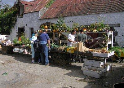 Market-day3