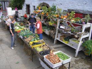 market-day2